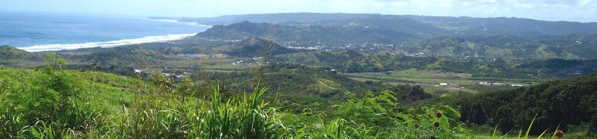Search Barbados Online